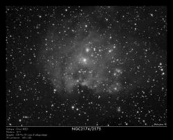 NGC2174/NGC2175